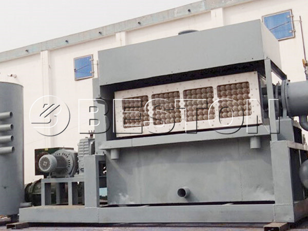 3000-5000pcs Apple Tray Making Machine