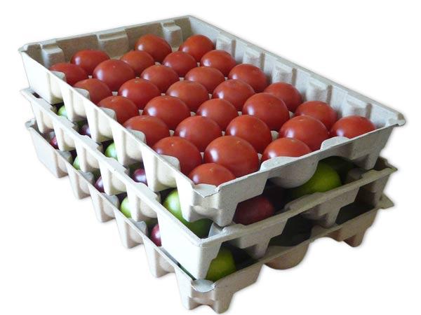 apple-fruit-tray
