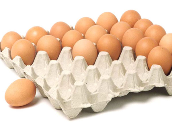 paper-egg-tray