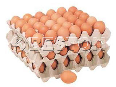 paper-egg-trays