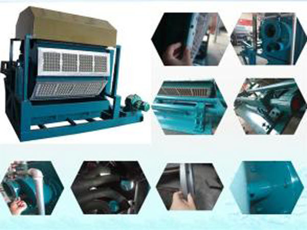 paper egg tray making machine on sale