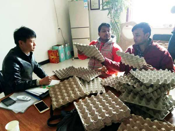 India Customers Test Egg Trays