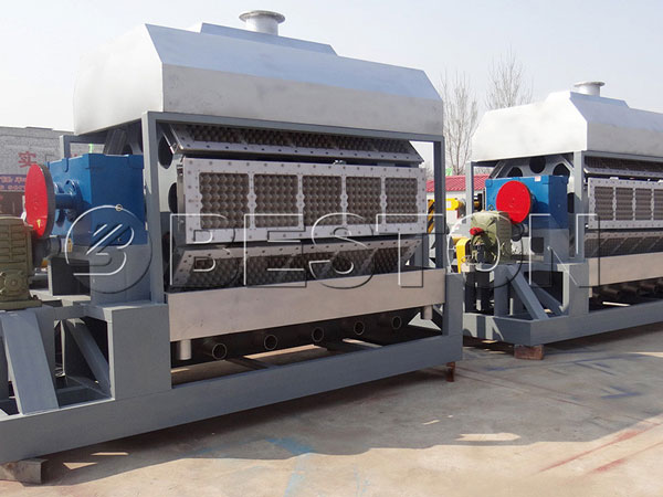BTF-5-8-Egg-Tray-Making-Machine-to-Egypt