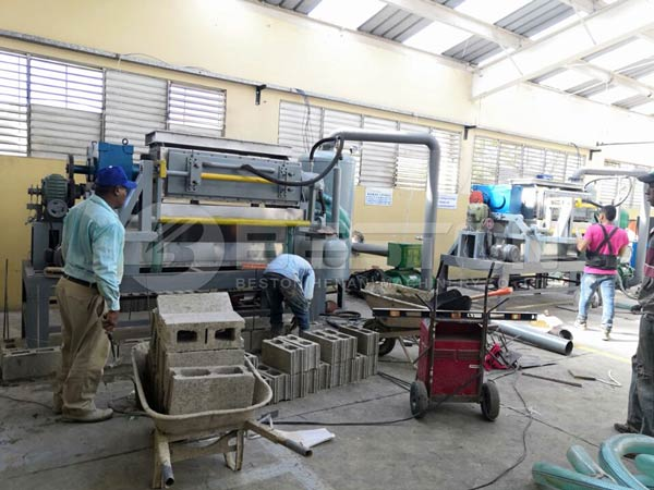 Egg Tray Machine Installed In Dominica