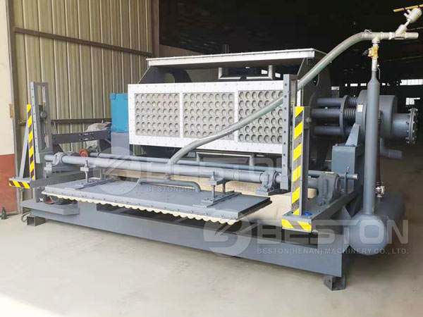 2000pcs Apple Tray Making Machine