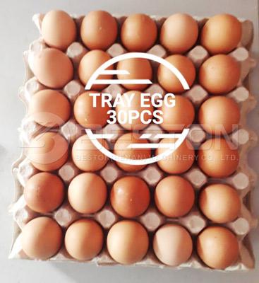 30 Holes Egg Trays