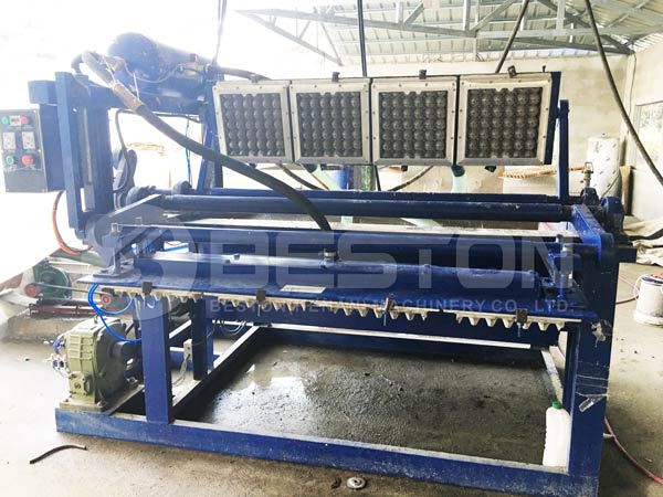 1500pcs Egg Tray Machine in Philippines