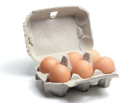 6 holes Egg Carton
