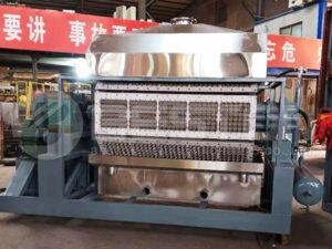 BTF-5-8 Automatic Egg Tray Machine to India