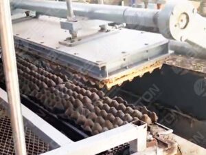 BTF1-4 Egg Tray Machine in Mexico