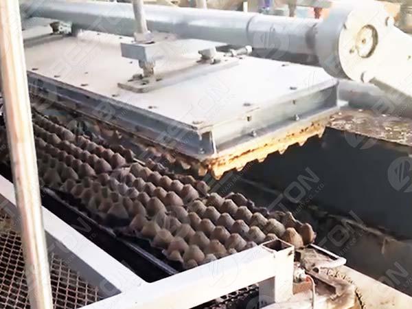 BTF1-4 Egg Tray Machine in Mexico